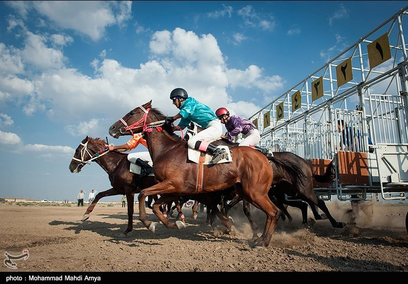 The  horse riding course started in Golestan