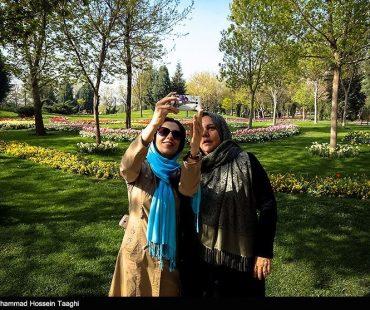Tulips Festival in Mashhad