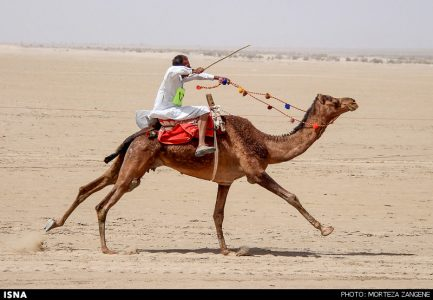 Camel Race Competition in Khara Desert in Central Iran