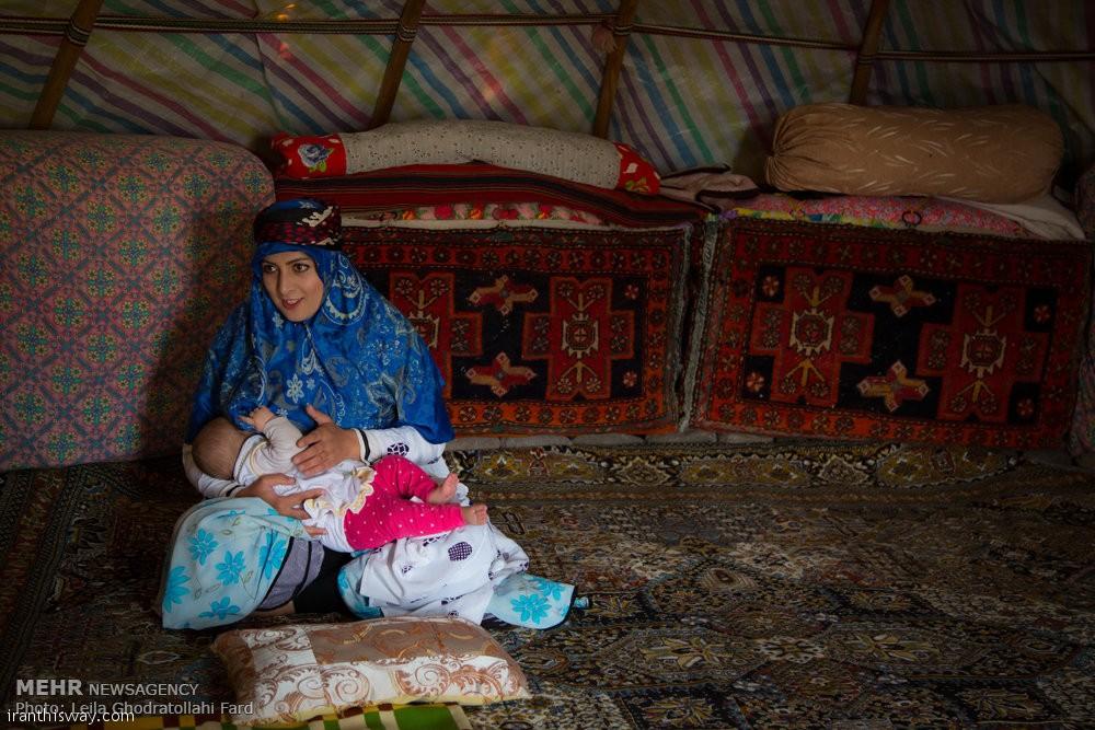 Shahsevan nomad women