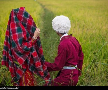 Turkmen traditional wedding ceremony+Photo