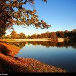 Photo: Wonderful nature fall in Mazadaran