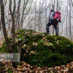 Photo: Beautiful autumn in Arasbaran forest