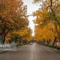 Photo: Unbelievable fall in Mashhad