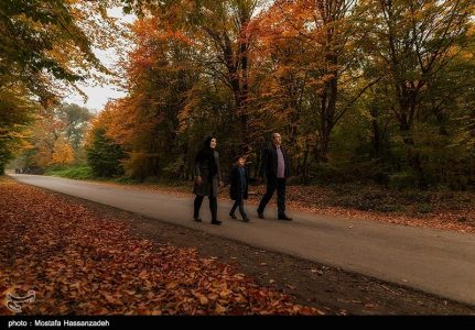 Photo:  Fall in Iran's Golestan