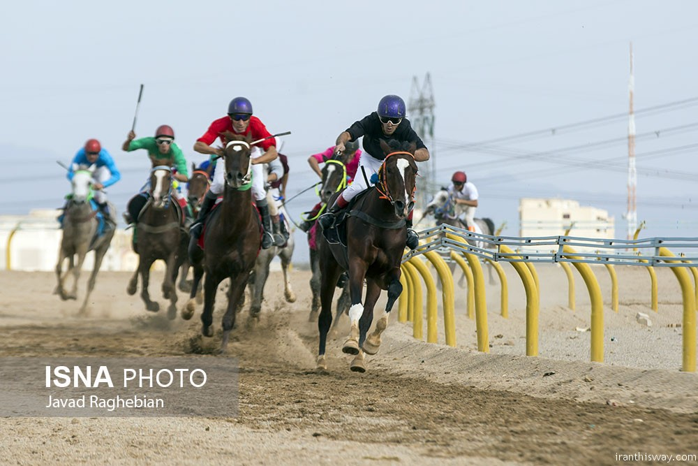 Photo: Yazd horse riding course