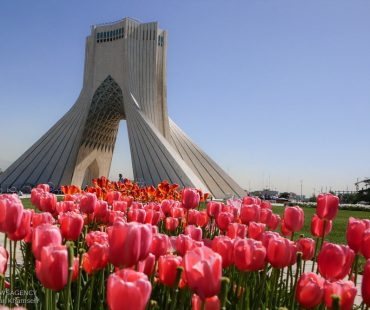 Photo: Spring of tulips in Tehran