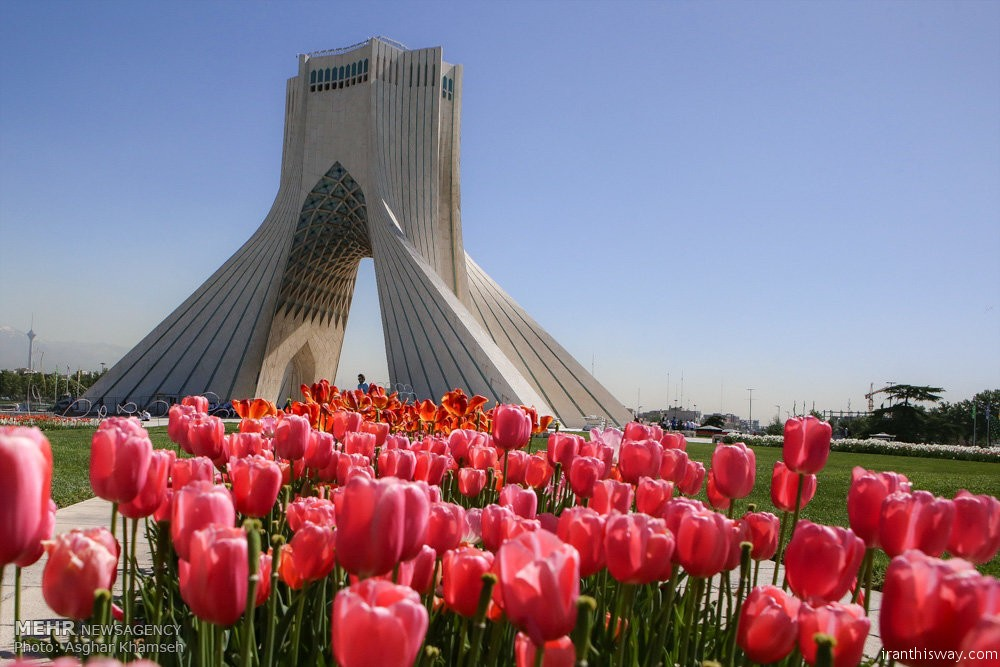 Photo: Spring of tulips in Tehran