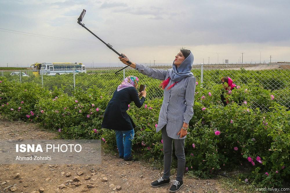 Photo: Golab; Iranian rose water