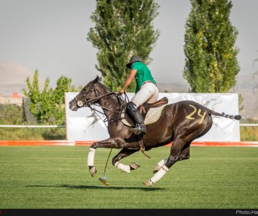 Polo registered as Iran's intangible cultural heritages in UNESCO