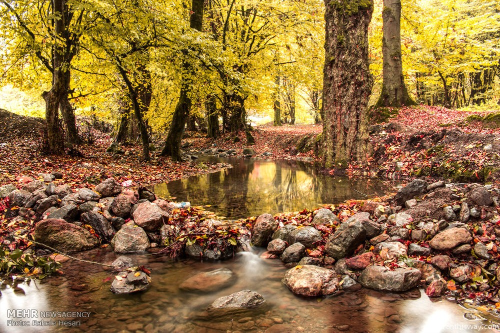 Photo: Iran's nature in Autumn colors